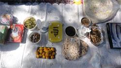 جشن سلامت بانوان و تغذیه سالم در نیاسر کاشان